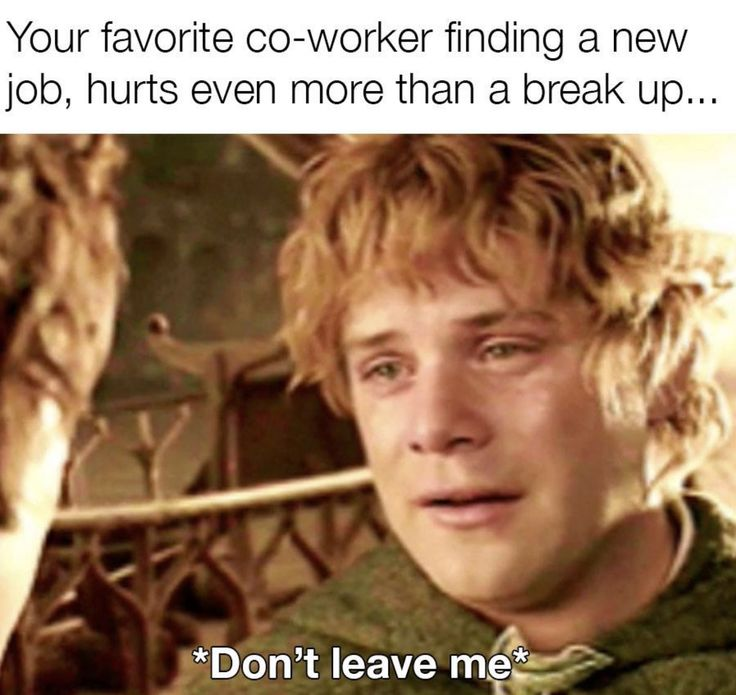 Don't Leave Me in 2020 Finding a new job, Work memes
