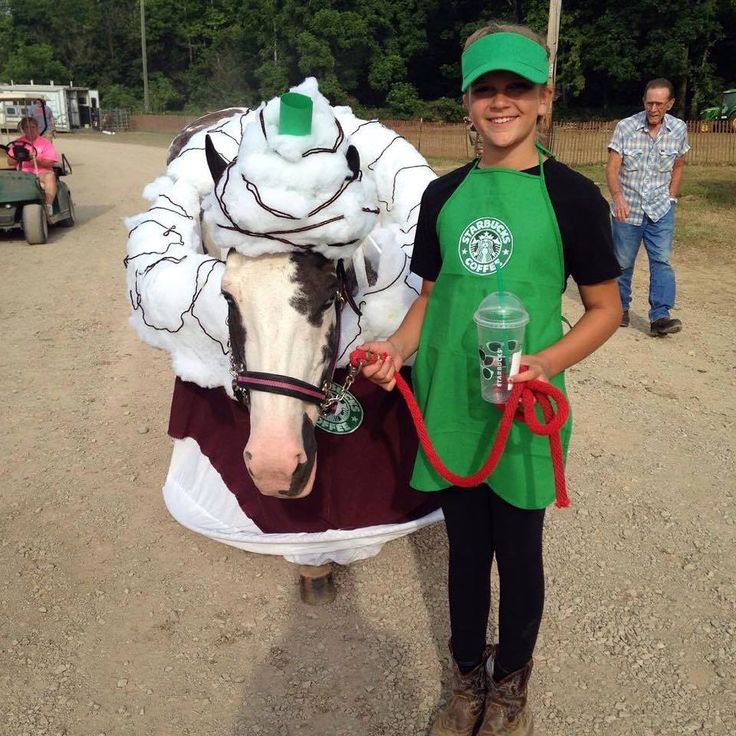 Starbucks horse costume, submitted by Michelle Wellington (See a SUPER collection of horse and rider Halloween costumes submitted by Chick's fans by following this link!)