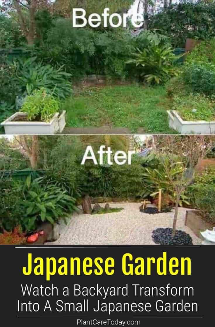 Small Japanese Garden Transforms This Backyard Watch Japanese Garden Small Japanese Garden Japanese Garden Design