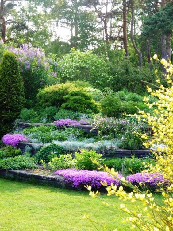 19 best Garden Ideas - steep slopes images on Pinterest ... on Steep Sloping Garden Ideas id=81001