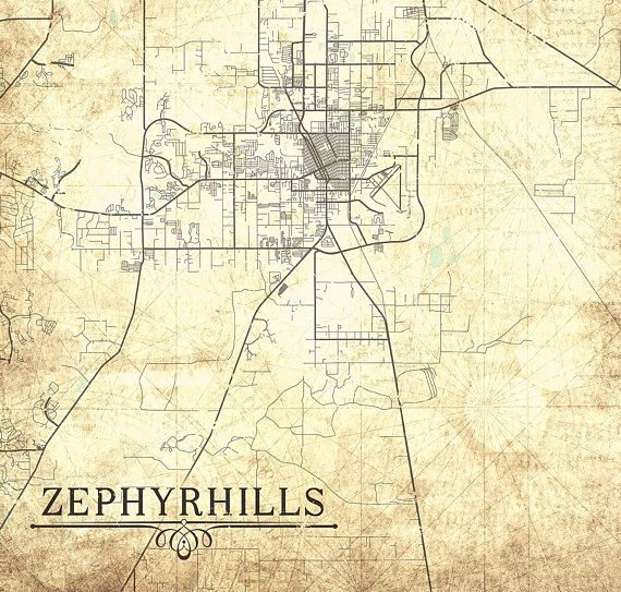 ZEPHYRHILLS FL Canvas Print Florida Fl Vintage map gift card Fl City on tennessee fl map, temple terrace fl map, merritt island fl map, seffner fl map, sarasota fl map, ocala fl map, wimauma fl map, leesburg fl map, st. augustine beach fl map, seminole fl map, tarpon springs fl map, lakeland fl map, st marks fl map, brooksville fl map, deleon springs fl map, south walton beach fl map, palm shores fl map, treasure island fl map, wellington fl map, port richey fl map,