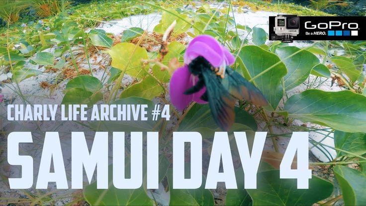 Samui 2015. Archive. Day - 4. GoPro 4 Black