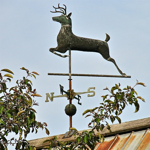 Basin Harbor Club (1790 / 1886) – weathervane above the Red Mill Restaurant