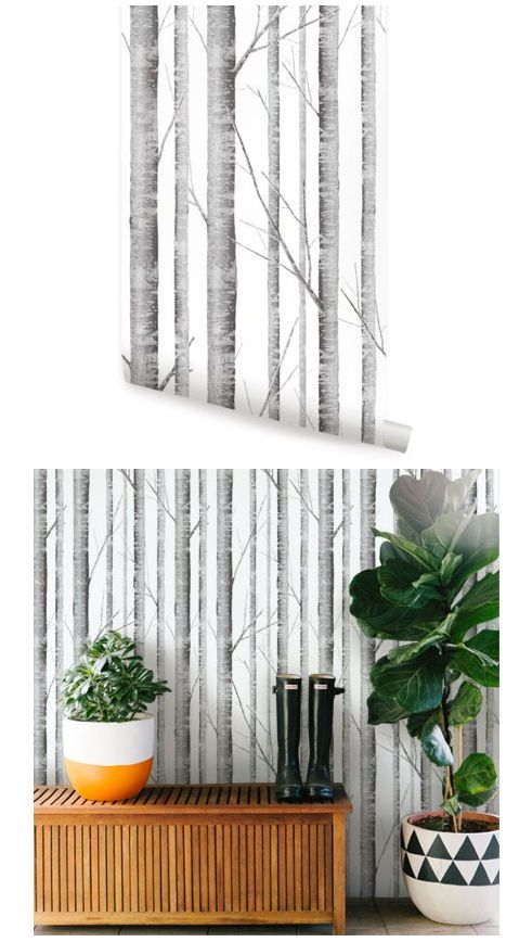 Birch tree peel and stick wallpaper wall sticker outlet - Birch tree wallpaper peel and stick ...