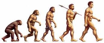Resultado de imagen para evolucion