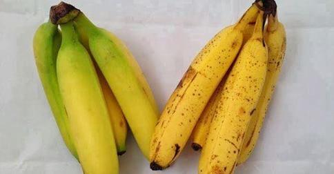 Banán je ovocie, ktoré sa od ostatných druhov výrazne líši. Iný má nielen pomer základných výživných látok, ale aj celkový vplyv na zdravie.