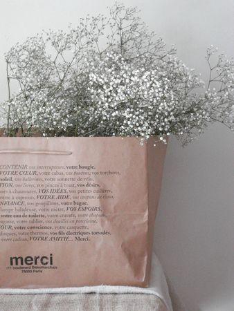 Planter shopping bag #merci