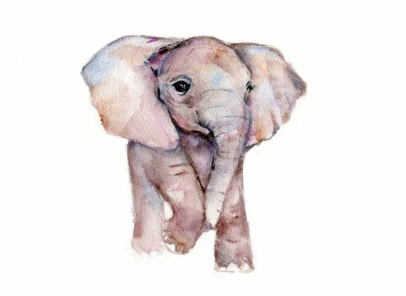 Baby Elephant Print from Original Watercolor by Marysflowergarden