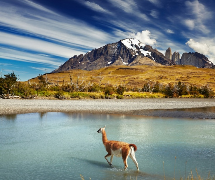 Torres del Paine National Park in Patagonia