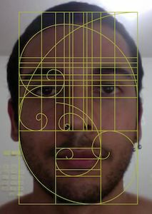 44 best the golden ratio images on pinterest fibonacci spiral the golden ratio feng shui and the apple logo ccuart Image collections