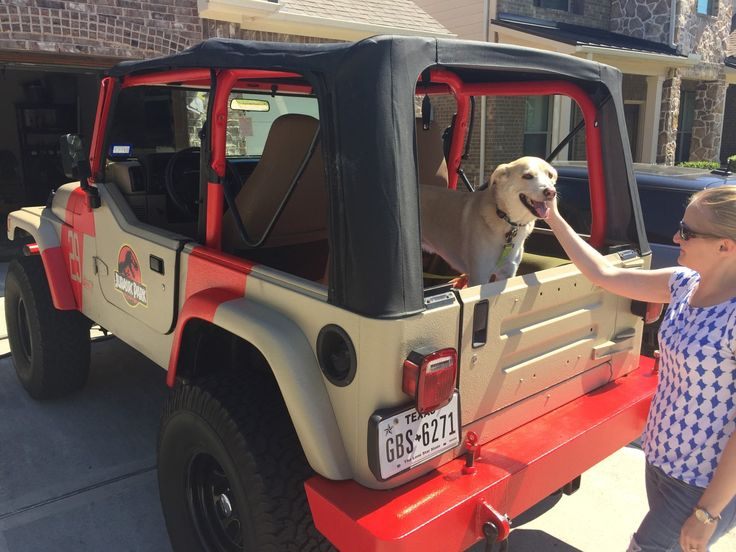 Yellow labs and Jurassic Jeeps count? #jeep #jeeplife #Wrangler #jeeps #Cherokee #JeepMafia #offroad #4x4