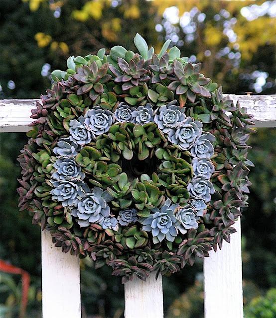 ideas for succulent wreath: Succulents Wreaths, Sebac Succulents, Succulent Gardens, Colors Combinations, Succulents Art, Hardy Succulents, Cactus Succulents Flowing, Succulents Ideas