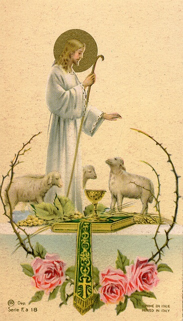 """Jesus is """"the lamb of God who takes away the sins of the world"""" -John 1:29, and his body, offered on the altar of the Cross, is given to us from the altar of the Mass."""