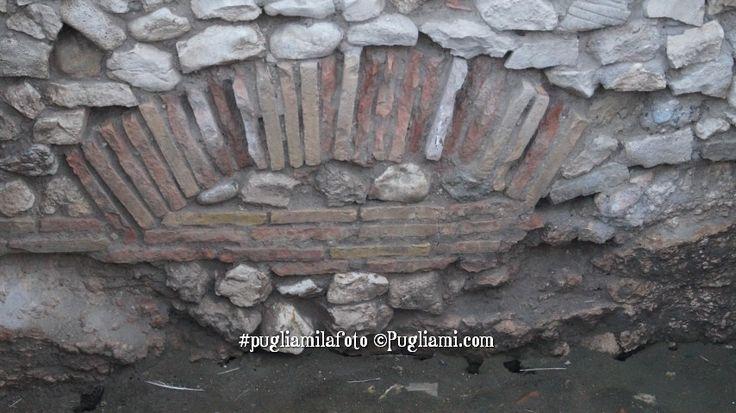 Il sito archeologico dell'antica Salapia