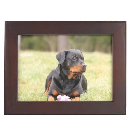#Rottweiler Dog Memory Box - #rottweiler #puppy #rottweilers #dog #dogs #pet #pets #cute