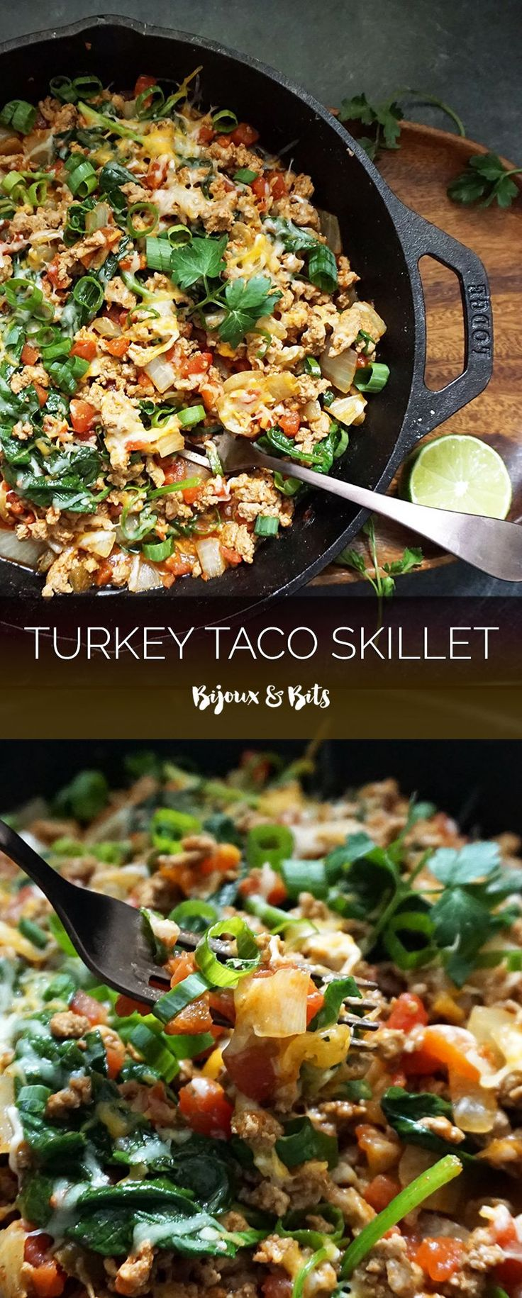 One pot turkey taco skillet Changes: Added Poblano Peppers (2), used shredded Monterey Jack cheese instead of a pre-shredded Mexican blend and used one large (28oz) can of Rotel