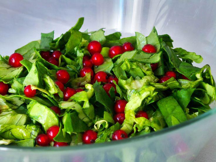 Ribizlis zöldsaláta A rubinvörös ribizli szemek nem csupán látványra gyönyörűek a zöld salátában, de az édes-savanykás íz üdítően hat minden falatban, és jól kiegészíti nyári ebédeinket. Hozzávalók és recept: http://kertkonyha.blog.hu/2014/07/05/ribizlis_zoldsalata