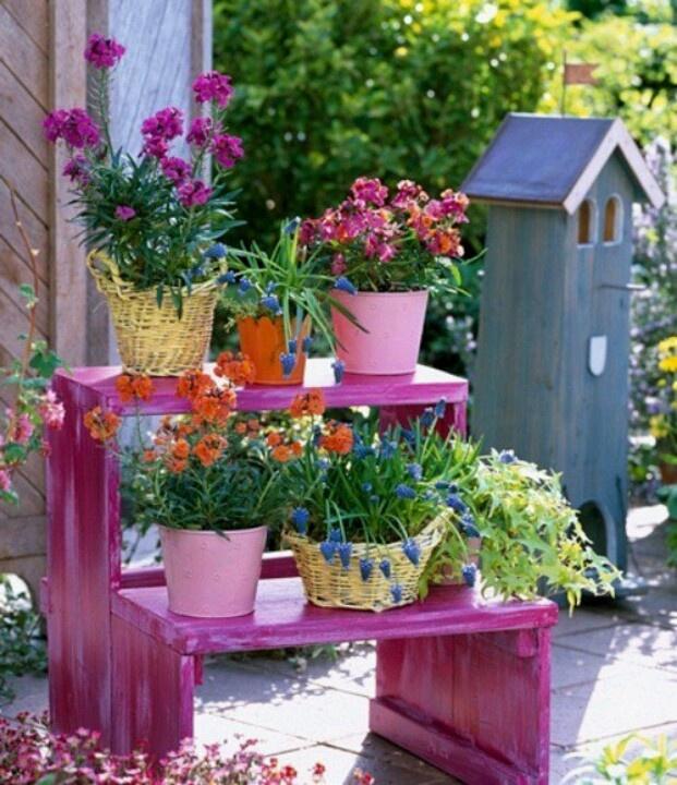 17 mejores im genes sobre mis flores hermosas en for Jardin 7 colores bernal