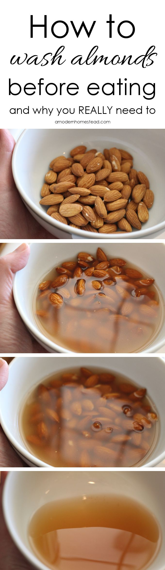 Almonds are a great nut to add to any dish. But did you know that you need to…