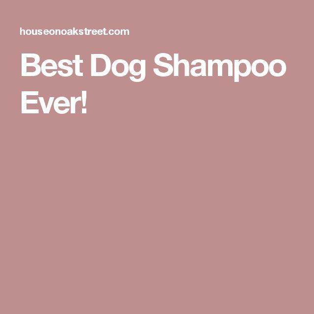 Best Dog Shampoo Ever!