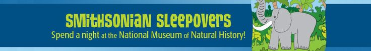 Smithsonian Sleepovers - Must do when the kids get a bit older (8 - 12 yrs old)