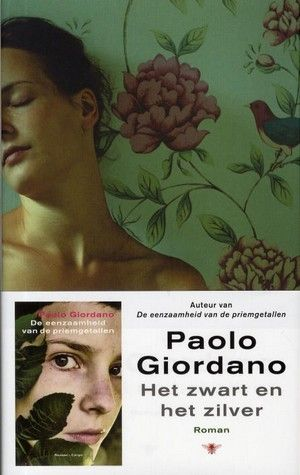 Het zwart en het zilver - Paolo Giordano