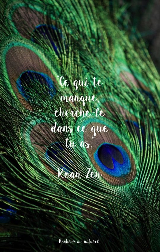 Fond d'écran // Citation Zen