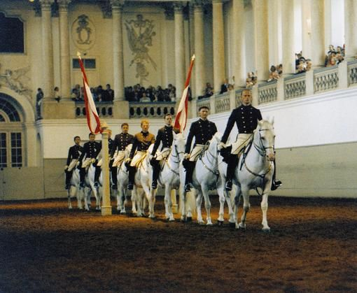 Lipizzaner Horses at the Spanish Riding School, Vienna- schedule 2015  Wien-Tourismus / Spanische Reitschule / Herbert Graf