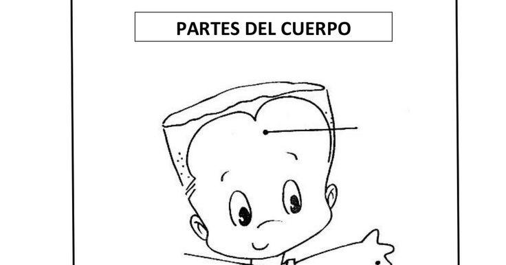 PROYECTO EL CUERPO HUMANO.doc.pdf