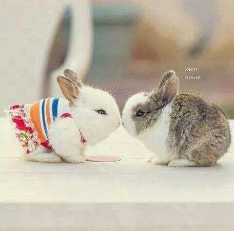 Sweet ❤❤❤
