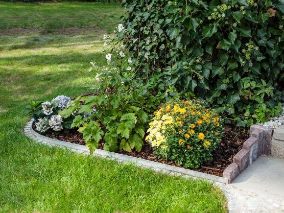 Beeteinfassung Mit Kantenblech So Geht S Beeteinfassung Garten Pflanzen