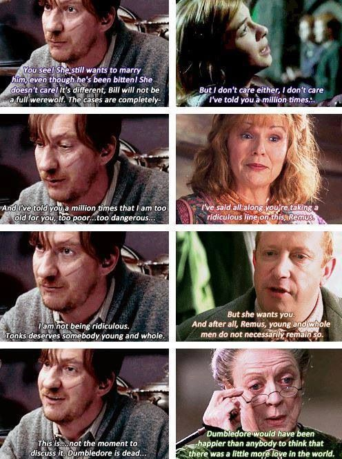 SO wish this scene was in the movies. I always loved Remus' and Tonks' relationship, the movies barley showed it.