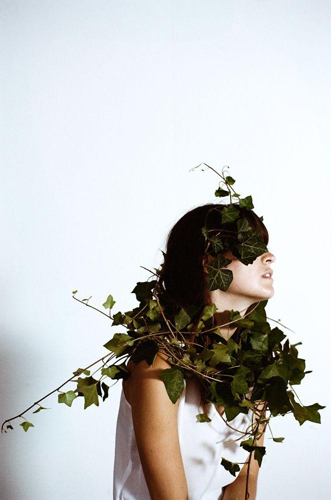 Wuchs – Green Gallery – Pflanzenfreude.de