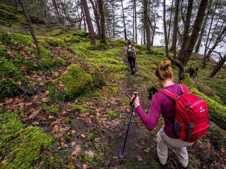 Favourite Hikes in the Cowichan Valley