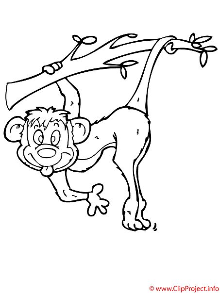 Affe Malvorlage gratis - Zoo Malvorlagen Malvorlagen