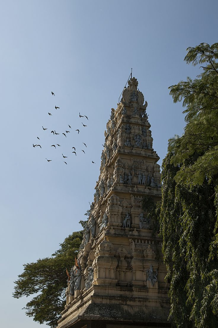 Amruteshwara Temple built in 1196.