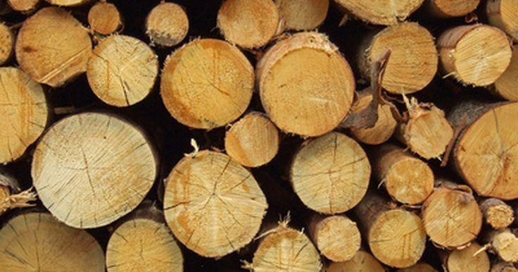 """Técnicas de tratamento de madeira. O objetivo de se tratar a madeira é obter a seiva, de acordo com PJ Smith, especialista em carpintaria, em seu livro """"Notes on Building Construction"""" (""""Notas sobre a Construção Civil"""", em tradução livre). Usando alguns métodos de tratamento, a seiva pode ser secada ou extraída. Já a madeira não tratada pode apodrecer e se decompor, tornando-se ..."""