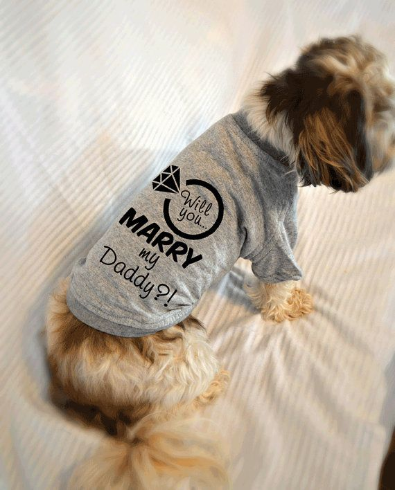 Proposal Ideas Using Pets: 17 Best Images About Doggie Threads On Pinterest