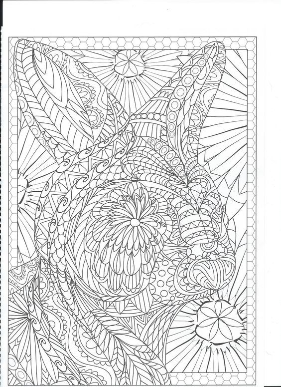 Adult Coloring Books Colouring Doodle Art Animal Pics Rabbit Doodles Free Kids Pages Garden