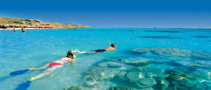 Coral Bay - Destinations - Tourism Western Australia (good website)