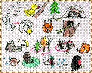 Из опыта работы «Учите вместе с нами» - Для воспитателей детских садов - Маам.ру