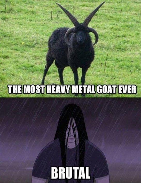 Heavy Metal - www.meme-lol.com