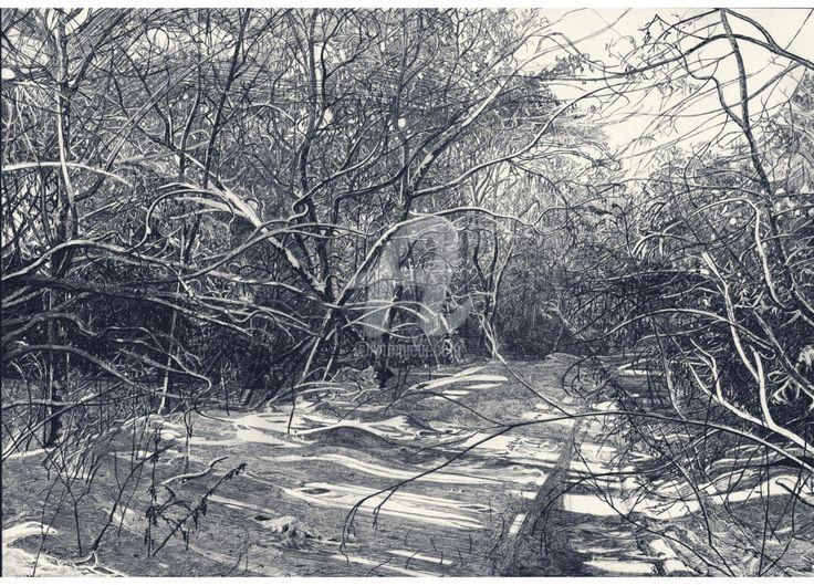 В зимнем лесу (Рисунок) - Роман Малышев