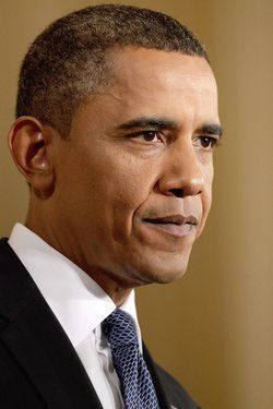 Poll: 1 In 5 Americans Believe Obama Is A Cactus | The Onion - America's Finest News Source