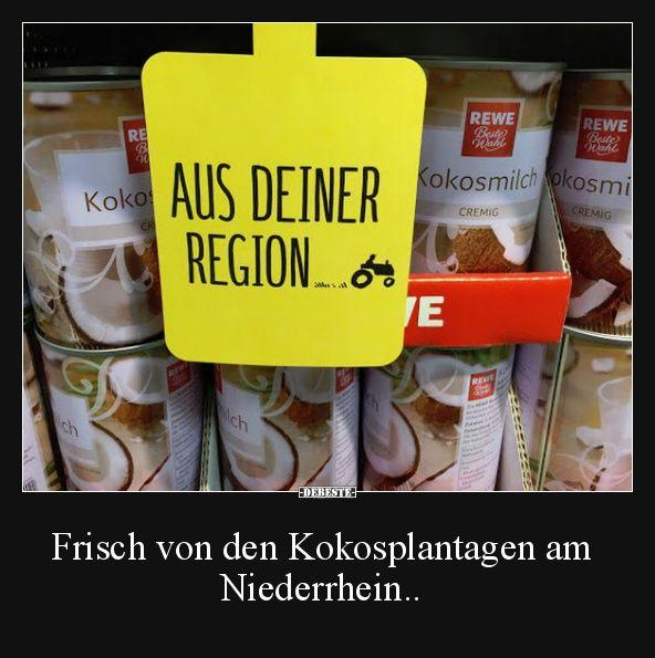 Frisch von den Kokosplantagen am Niederrhein.. | Lustige Bilder, Sprüche, Witze, echt lustig