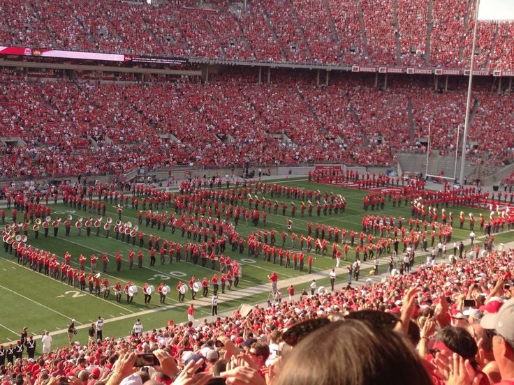 OSU game day buckeye