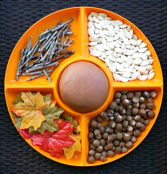 A beautiful invitation to play with Pumpkin Playdough, acorns, pumpkin seeds, leaves, and small twigs.