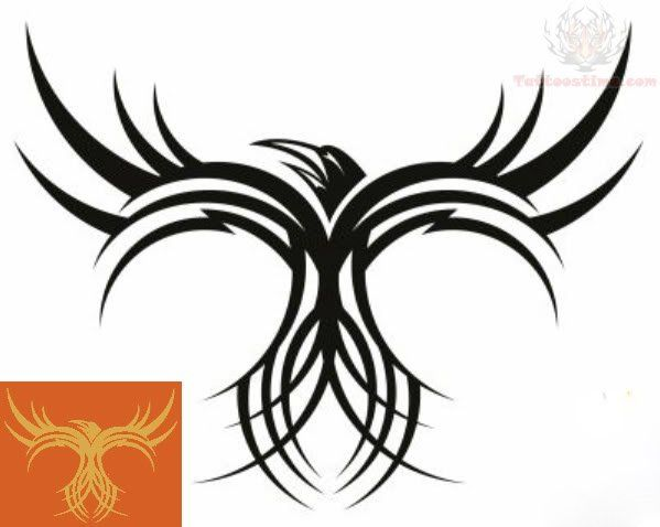 ... com img src http www tattoostime com images 247 tribal bird tattoo