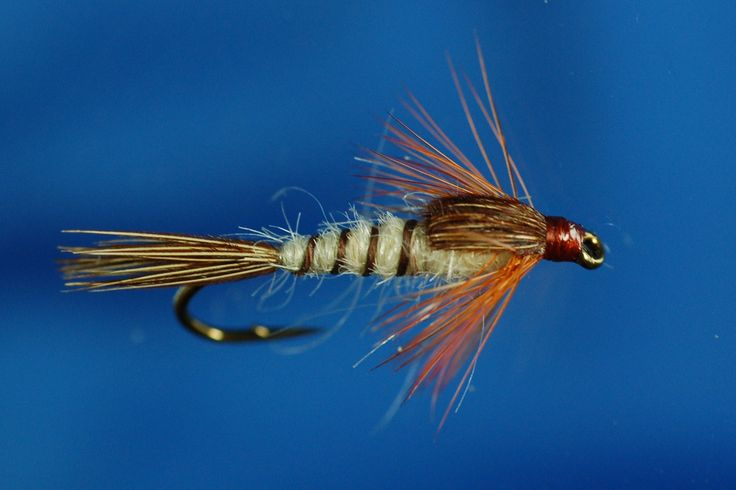 """New Pattern at Fish4Flies.com Richard Walker's Mayfly Nymph is a """"must have"""" pattern in your flybox when on any water where mayfly are known to be. This weighted dressing gets you down into those deeper holes where the big and wary feel safe! http://www.fish4flies.com/Nymphs/Stalkers_and_Weighted/Richard_Walker_Mayfly_Weighted #FlyFishing #Nymph #Trout #Mayfly"""