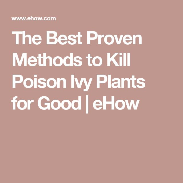 The Best Proven Methods to Kill Poison Ivy Plants for Good | eHow